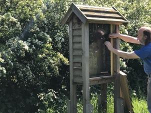 David the beekeeper
