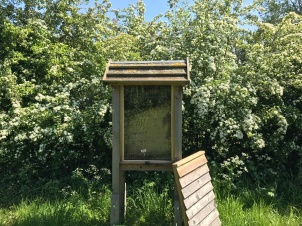 Observational beehive