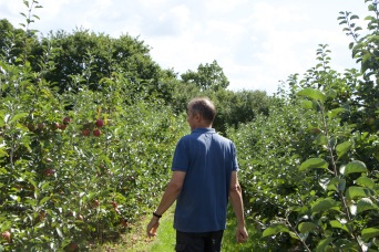 Philip showing us around the apple orchards
