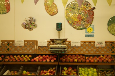 Selection of fruits available at the farm shop